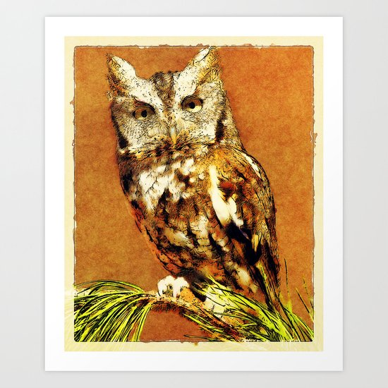 How Now Brown Owl Art Print