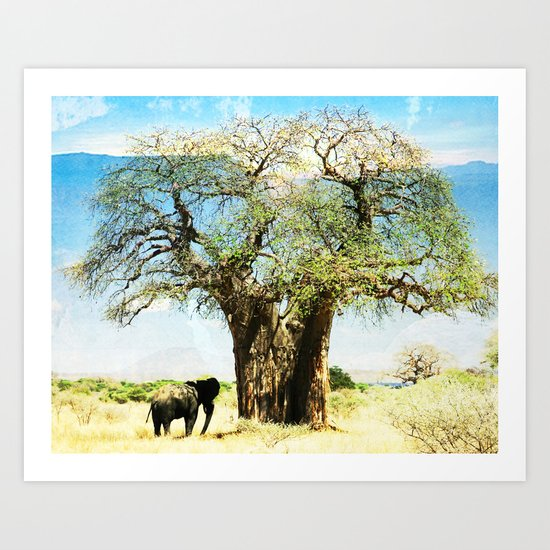 Finding an old friend - elephant in the wild Art Print
