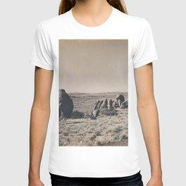Desert Rocks T-shirt