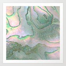 Shell Texture Art Print