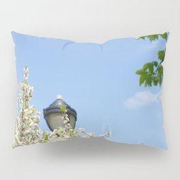 Lewis & Clark Lamp Pillow Sham