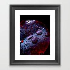 lily pad XIII Framed Art Print
