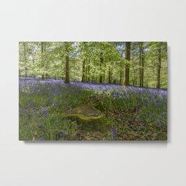 Woodland Wonder Metal Print