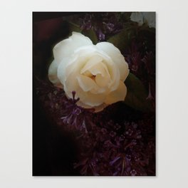 """""""Fragrant branch, thou didst promise me that thou hadst for me love-""""-""""Róisín Dubh"""" Canvas Print"""