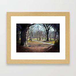 park. Framed Art Print