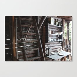 the土热  Canvas Print