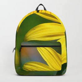Pollination Backpack