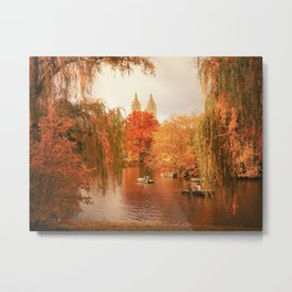 Central Park New York City Autumn Metal Print