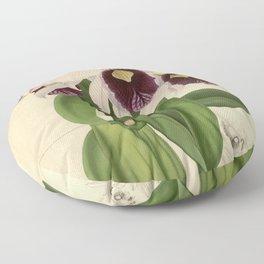 The Orchid Album - Dendrobium Suavissimum Floor Pillow