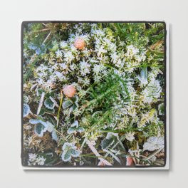 Frosty Salad Metal Print
