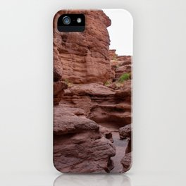 Desert trail leads through a narrow slot canyon in San Lorenzo Canyon in the Chihuahuan Desert outside of Socorro, New Mexico, USA iPhone Case