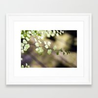 lace Framed Art Prints featuring Lace by Katie Kirkland