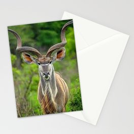 painting of kudu  Stationery Cards