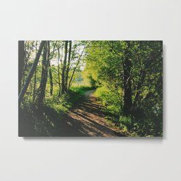 setting sun casting shadows along the woodland footpath Metal Print