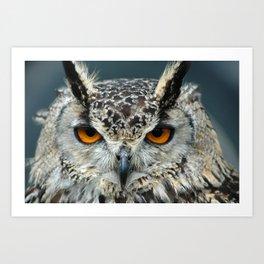 Bengal Eagle Owl Art Print