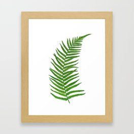 Fern leaf Framed Art Print
