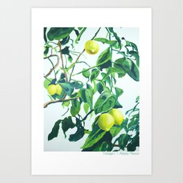 Foliage I / Lemon Tree Art Print