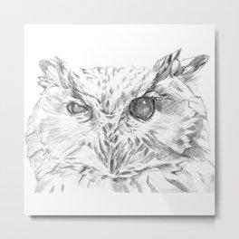 Cock-eyed Owl Metal Print