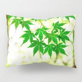 Green leaves of Japanese maple Pillow Sham