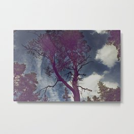 SURROUNDED Metal Print
