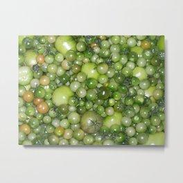 Green Tomatos Metal Print