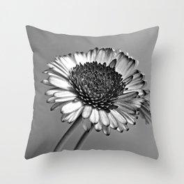 Monochrome Gerbera Throw Pillow