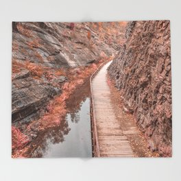 Paw Paw Boardwalk Trail - Pastel Fantasy Throw Blanket