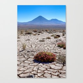 Chile to Bolivia Canvas Print