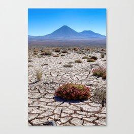 Chile to Bolivia Canvas Print