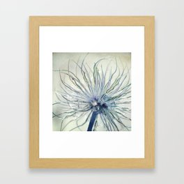 coloured feathers Framed Art Print