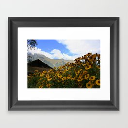 Daisies and Alps Framed Art Print