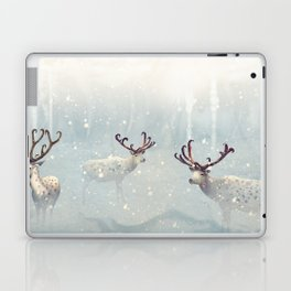 WinterFly Laptop & iPad Skin