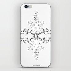 Flowers of Autumn iPhone & iPod Skin