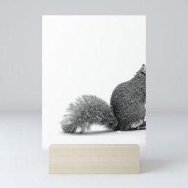 nuts Mini Art Print