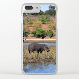 Hippo. Clear iPhone Case