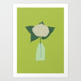 Floral drawing III: white hydrangea Art Print