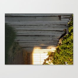 This Side of the Fence  Canvas Print