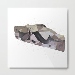 Red Tail Boa Metal Print