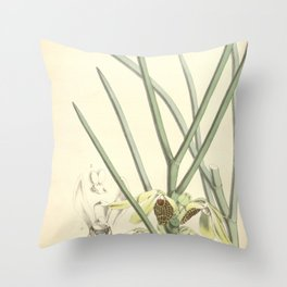 Luisia psyche Curtis' 92 (Ser. 3 no. 22) pl. 5558 (1866) Throw Pillow