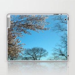 Spring Morning Sky Laptop & iPad Skin