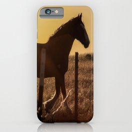 Wyoming Clydesdale iPhone Case