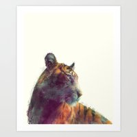 tiger Art Prints featuring Tiger // Solace by Amy Hamilton
