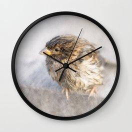 Sparrow - Faulty forecast Wall Clock
