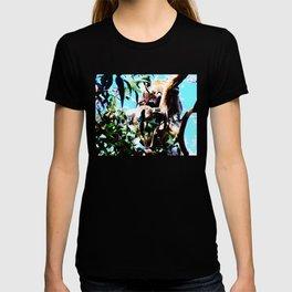 Cradling Joey T-shirt