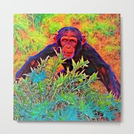 AnimalColor_Chimpanzee_003_by_JAMColors Metal Print