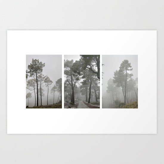 Dream forests. Triptych Art Print