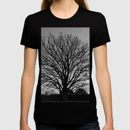 richmond park- b-w T-shirt