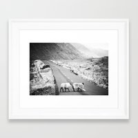 irish Framed Art Prints featuring Irish Sheeps by GF Fine Art Photography