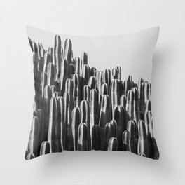 Cactus Landscape Throw Pillow