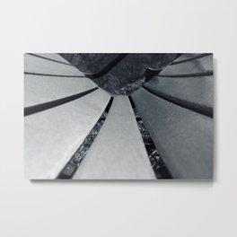 Veer Metal Print